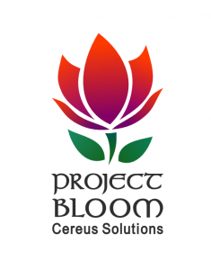 Project Bloom by Cereus Soltions in North LIttle Rock, Arkansas